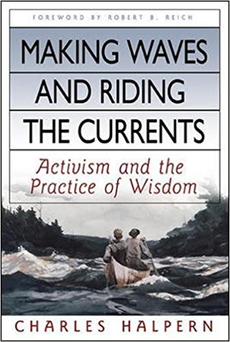 Making Waves And Riding The Currents Book Cover
