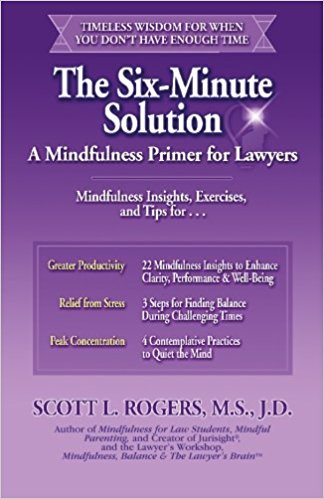 The Six-Minute Solution Book Cover